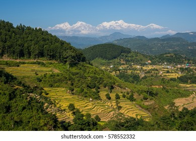 Rice terraces and Annapurna range from the road to Pokhara