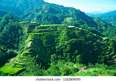 Rice Terraces Banaue Philippines