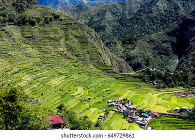 Rice terraces in Batad, Philippines during sunny day.