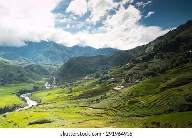 Rice terraces field in Rainning season in Vietnam.