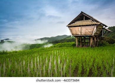 Rice terraces and mountain house in the natural rain.