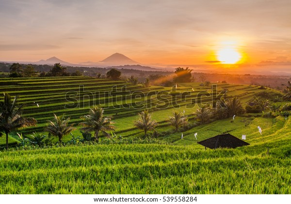 Bali Indonesia Mountains