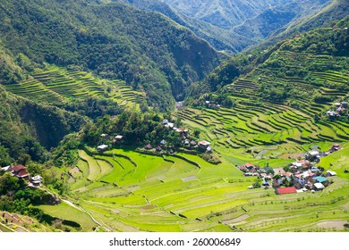 Rice terraces in the Philippines. The village is in a valley among the rice terraces. Rice cultivation in the North of the Philippines, Batad, Banaue.