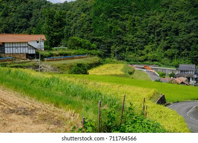 Rice terraces and private houses in Oonan Town, Shimane prefecture.