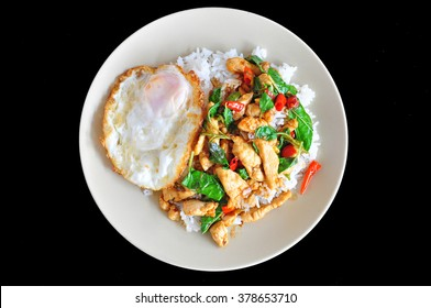Rice topped  stir-fried chicken and basil  with Fried egg