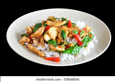 Rice topped with stir-fried chicken and basil