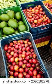 riche en saveurs et délicieux tomate et avocats dans un marché populaire au lever du soleil en amérique du sud