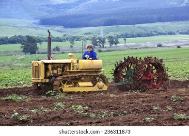 Richmond, KwaZulu Natal, South Africa - December 7, 2014: Unknown man demonstrating Vintage Caterpillar Diesel Forty at Natal Vintage Tractor and Machinery Club at Baynesfield Estate in Richmond,