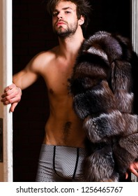 Richness and luxury concept. Luxury lifestyle and wellbeing. Luxury status symbol. Sexy macho tousled hair coming out bedroom door. Bachelor rich lover. Guy attractive posing fur coat on naked body.