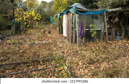 Rickety shed in an abandoned garden plot