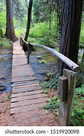 Rickety Walking Bridge Over Creek at Elsa Rupp Trail