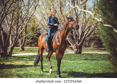Rider elegant woman talking to her horse. Portrait of horse pure breed with woman. Equestrian horse with rider playpen for horses background