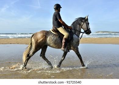 Rider galloping on horseback along the beach