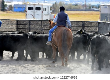 Rider guides cutting horse into cow herd.