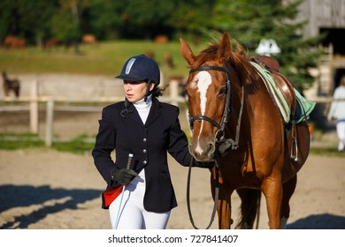 The rider with his horse before the competition