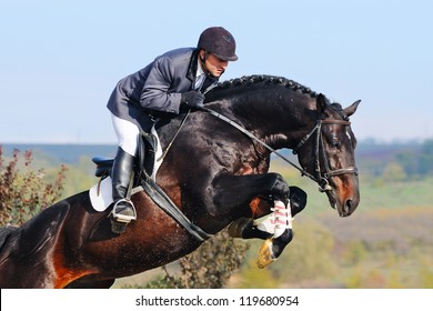 Rider on bay horse in jumping show