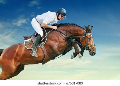 Rider on bay horse in jumping show against blue sky