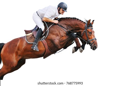 Rider on bay horse in jumping show, isolated on white