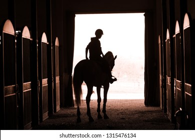 Rider on the horse in the stable doors