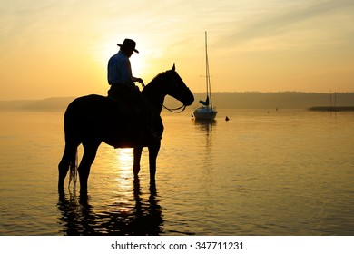 Rider on a horse at sunrise