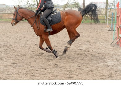 A rider on horseback overcomes obstacles.
