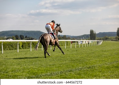 rider on the racing circuit competition, racing horse coming first to finish line in summer day, jocker