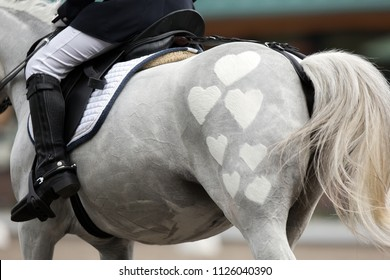 rider on a white horse, dressage, haircut hearts
