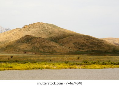 Riders on horseback ride at the foot of the mountain on the prairies