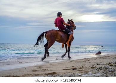 Rides horse along the ocean
