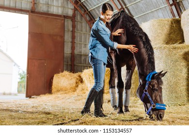 Riding boots. Dark-haired appealing horsewoman wearing stylish dark riding boots petting dark horse