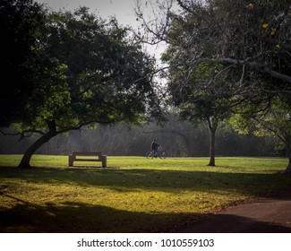 Riding his bike through the park on a relaxing fall morning in California.