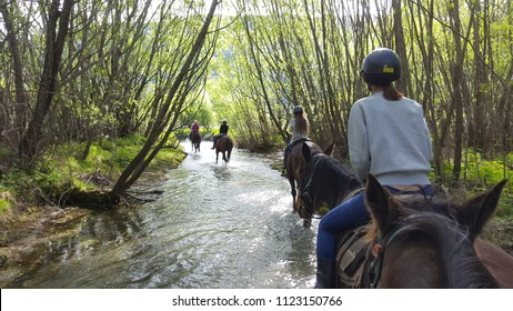 Riding a horse in New Zealand. We cross the river, dry riverbed, forest and mountains. The horses are beautiful animal and gentle too. The scenery is super stunning in this area.