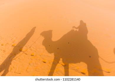 riding my dromedary on the desert, Merzouga, Morocco