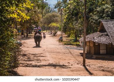 Riding on an elephants