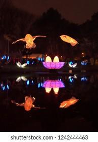 Riga, Latvia - November 17, 2018. Multi-colored audiovisual performance PIKOOKS - a pair of kites resembling snowy owls, soar the sky in a wedding dance during Light Festival Staro Riga 2018