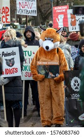 Riga, Latvia - November 30, 2019 : A man in a fox suit is holding a poster and Anti Fur protesters outside with NO FUR banner at Animal Rights Protest. March for Animal Advocacy in Latvia, Europe