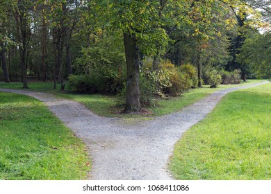 Right or left. A fork in the road in a forest