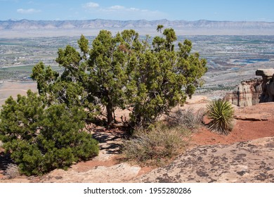 Rim of the Colorado National Monument above the Grand Valley in western Colorado