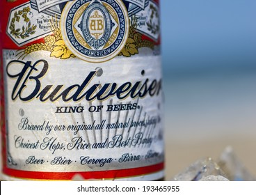 Rimini,Rivazzurra,IT. May 18,2014.Budweiser beer close up. Introduced in 1876 by Adolphus Busch it has grown to become one of the highest selling beers in the United States.