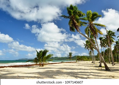 The Rincon beach wild and hard to reach on the Samana peninsula in Dominican Republic