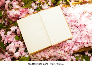 Ring. Gold gift for woman. Book. Pages. Opened book. Eampty pages. Stately flowering Japanese cherry. Sakura. Flowering Japanese cherry. Top view.
