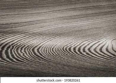 ring patterns on the wood