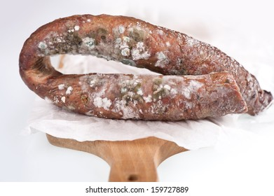 Ring of toxic mold on smoked sausage on white paper, old food with toxic mold or mould lying on paper. Nobody, horizontal orientation.
