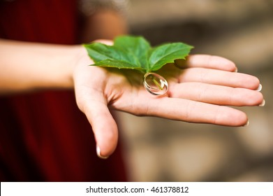 Rings and green leaf on Palm bride