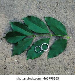 rings on green sheet . Wedding detail