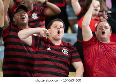 Rio, Brazil - october 23, 2019: Fans during Flamengo vs Gremio match valid for the return game of the Libertadores Cup semifinal, held at Maracana Stadium.