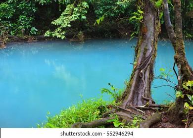 Rio celeste and lush vegetation at Tenorio national park Costa Rica