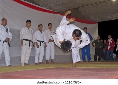 RIO DE JANEIRO - AUG 18: Judo presentation. Judo fighters perform at the japanese party in Rio de Janeiro. August 18, 2012 in Rio de Janeiro, Brazil