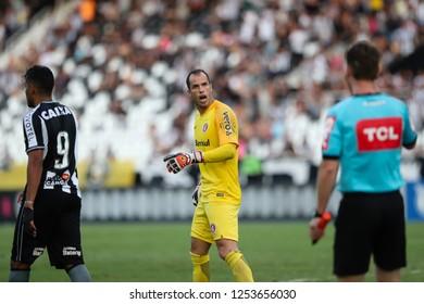 Rio de Janeiro, Brasil, 11 18 2018 - Goalkeeper of Internacional team (Marcelo Lomba) during a Brazilian Championship Soccer match. Botafogo team versus Internacional team.