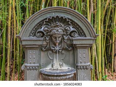 Rio de Janeiro, Brazil - December 26, 2008: Botanical Garden or Jardim Botanico. Small greenish dark fountain statue of water streaming out of human face in receptacle. Green bamboo as backdrop.